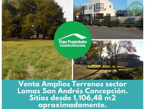 venta terrenos en concepcion sector lomas de san andres