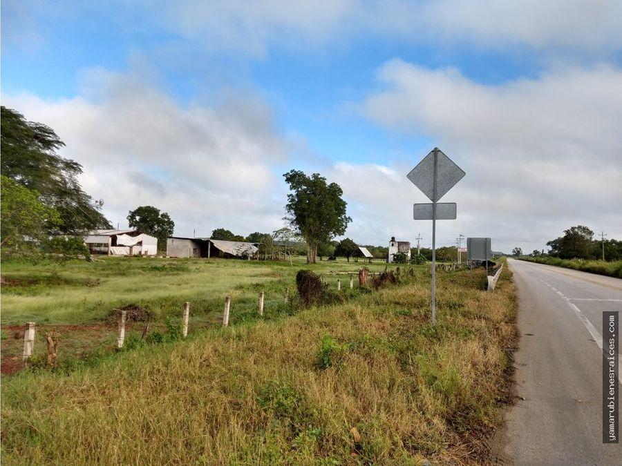 terreno carretera champoton escarcega 780 has