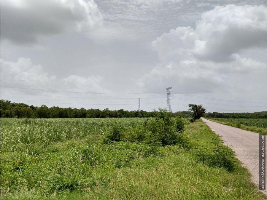 terreno rustico 100 o 180 has colinda con pueblo