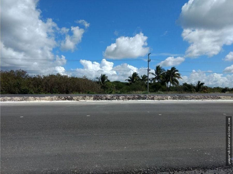 venta de terreno frente al mar champoton