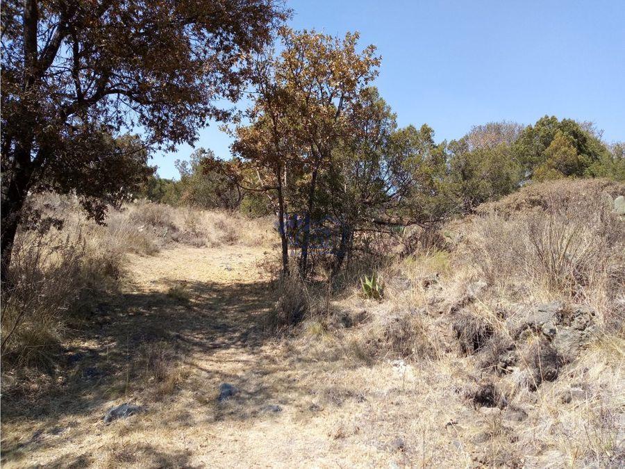 terreno en tetla para rancho con casona de piedra