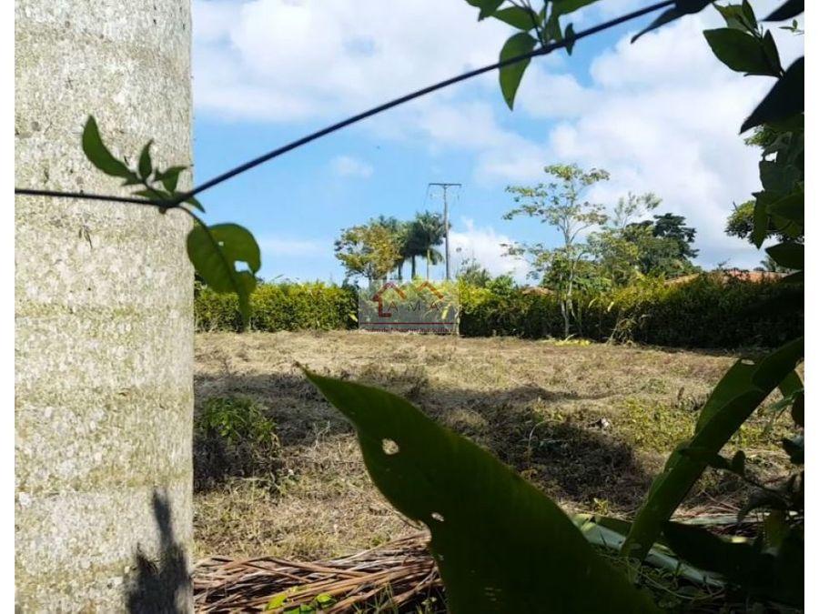 ventapermuta lote de terreno en la tebaida