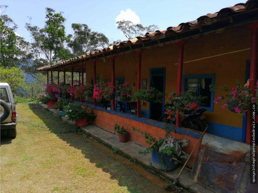 venta de finca cafetera vereda san miguel ciudad bolivar