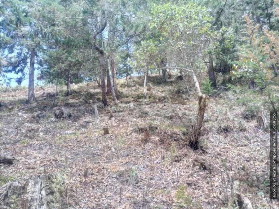 venta de lote sector vereda la floresta san vicente