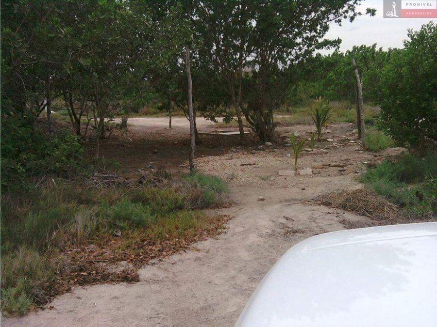 en venta terreno en sisal yucatan