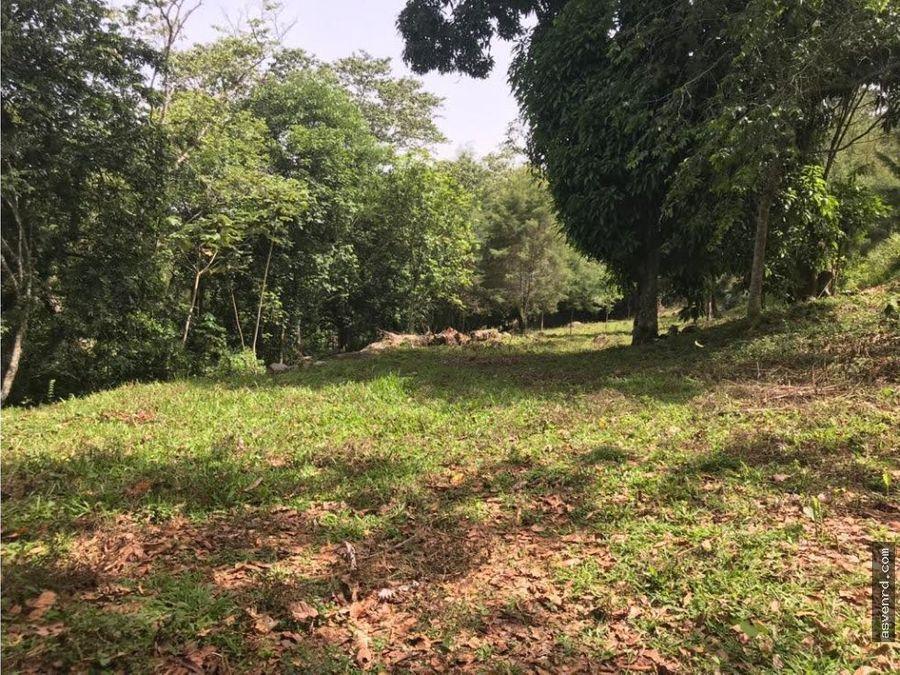 terreno de 20 tareas en venta en manabao jarabacoa