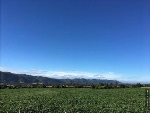vendo hermoso terreno subachoque cmarca mj