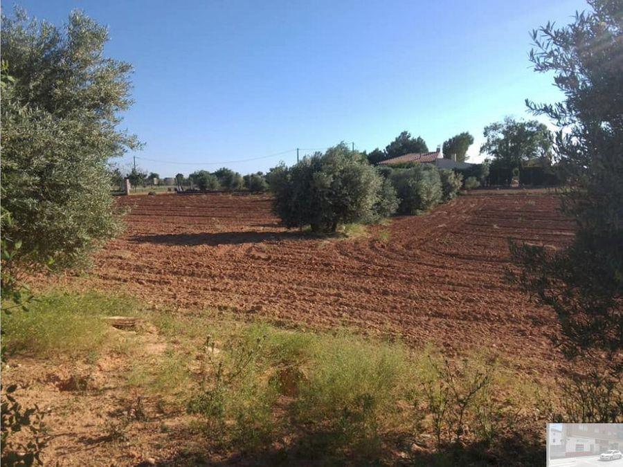 parcela camino morenales a 5 km de villarrobledo
