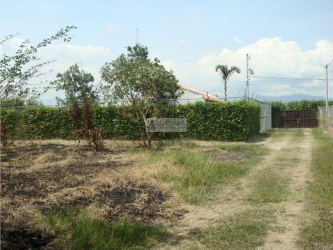 lote en venta en parcelacion en rozo palmira