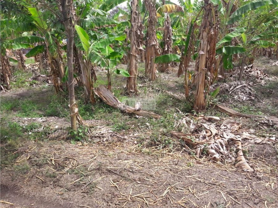 lote en venta en rozo en callejon la marina palmira