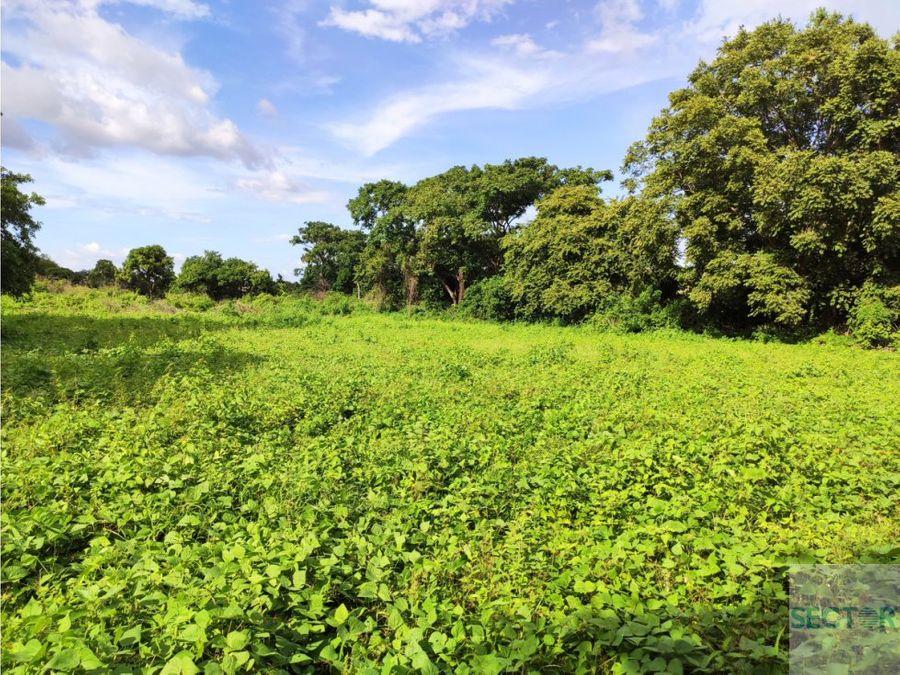 carretera a masaya km 10 12 terreno en venta