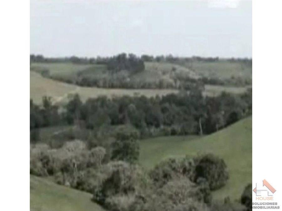 hacienda ganadera sector san martin meta