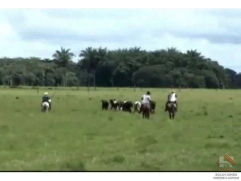hacienda ganadera sector san martin meta 1700 hectareas