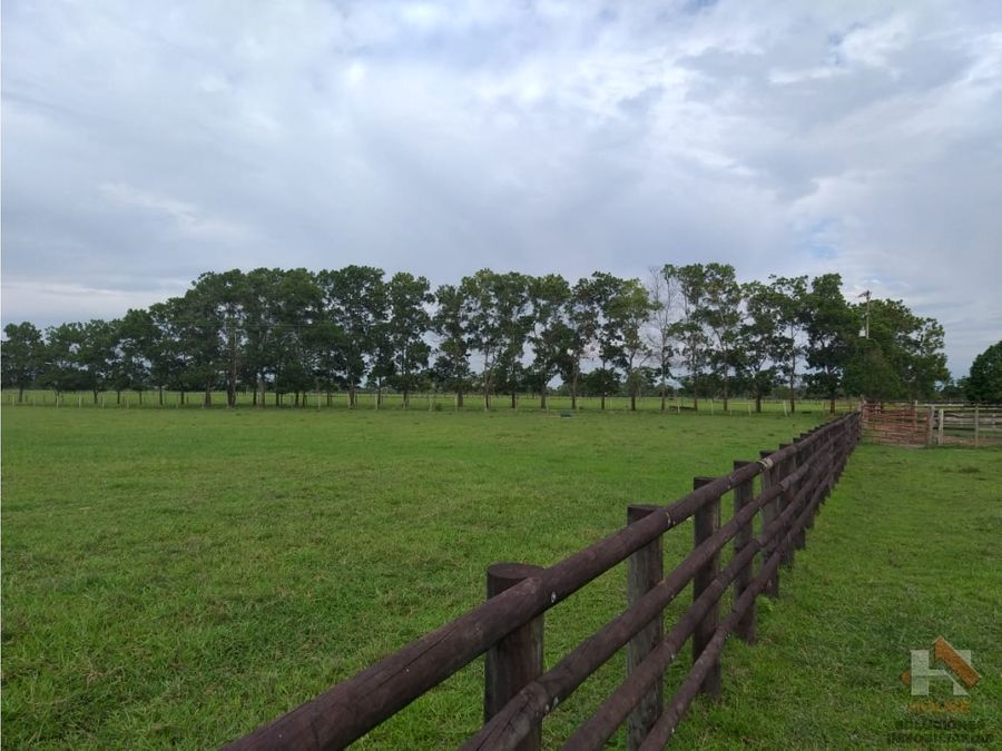 finca ganadera sector pueto lopez meta 4990 hectareas