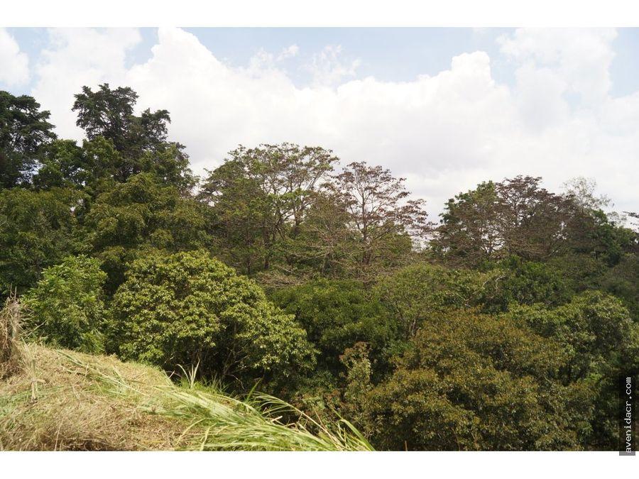 vendo terreno en sabanilla 36 067 0019