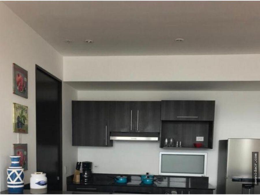 alquilo maravilloso apartamento rohrmoser
