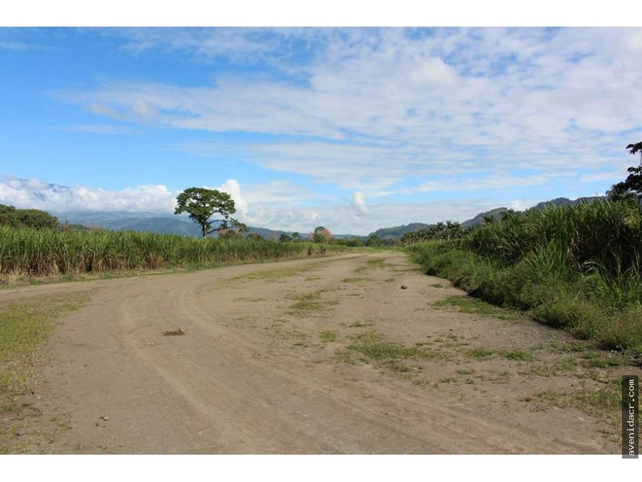 vendo terreno en turrialba 36 071 0016