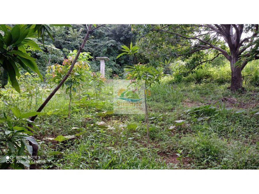 2 hectareas de tierra