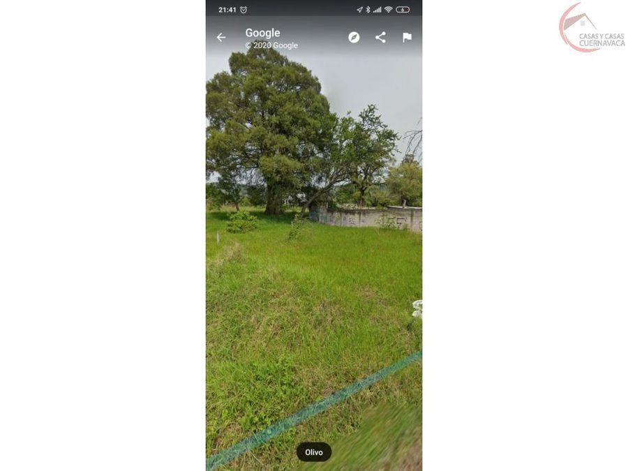 terreno en venta en jiutepec campo alameda