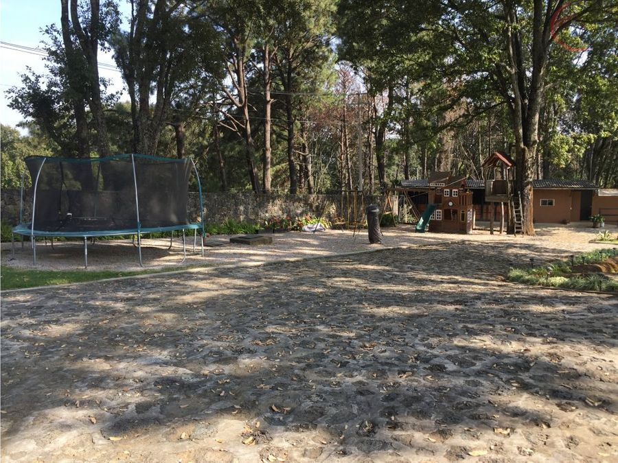 hipico del bosque cuernavaca