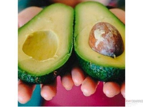inversion en produccion de frutos organicos