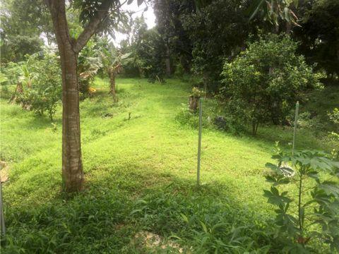 se vende terreno potrero grande corregimiento el coco mm