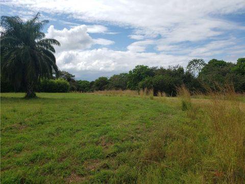 terreno en venta en pedasi hacienda los gavilanes