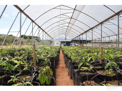 finca en venta de 1 hectarea en penonome drv