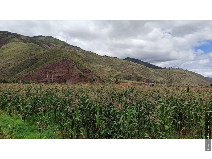 vendo lote terreno 3300 mt oropesa cusco peru