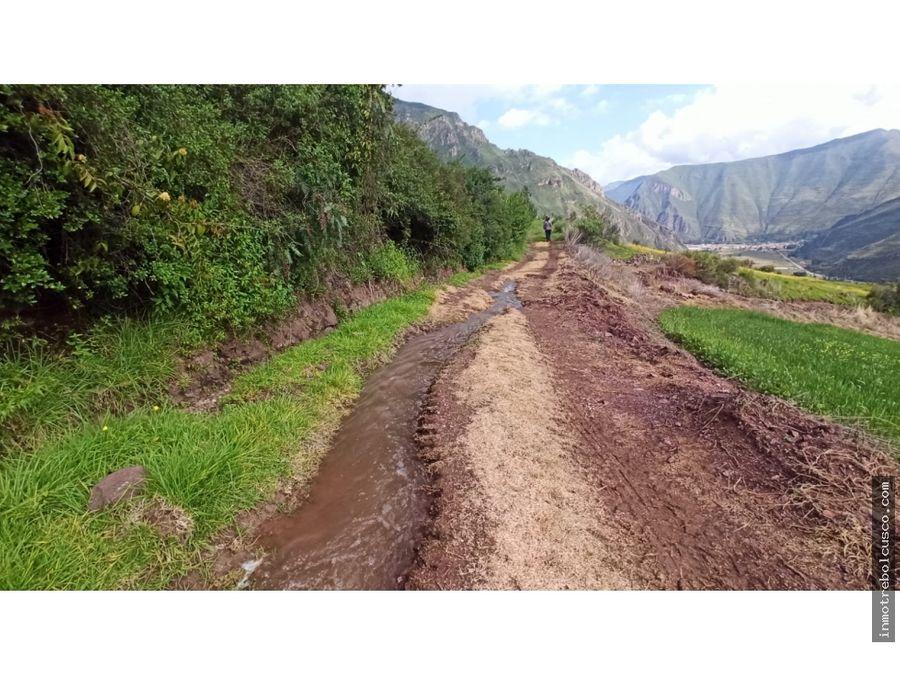 vendo terreno 3692 m2 paullo grande taray cusco peru