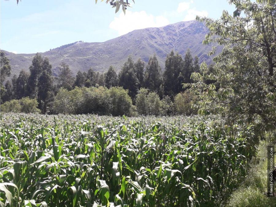vendo lote 1192 m2 huayocari valle sagrado cusco peru