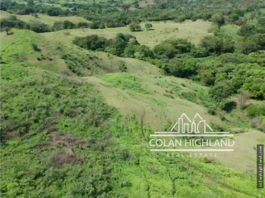 se vende finca de 19 hectareas en los santos