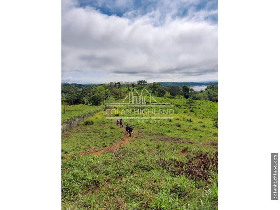 se vende finca de 90 ha a orillas del lago bayano
