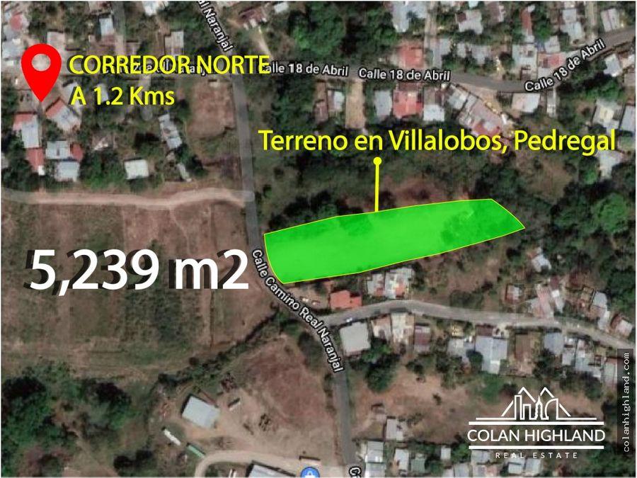 se vende terreno de 5239 m2 en villalobos pedregal