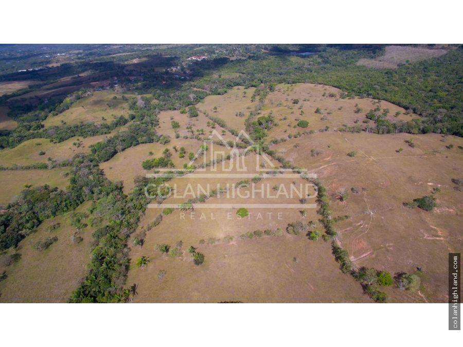 se vende finca de 654 hectareas en toabre penonome cocle