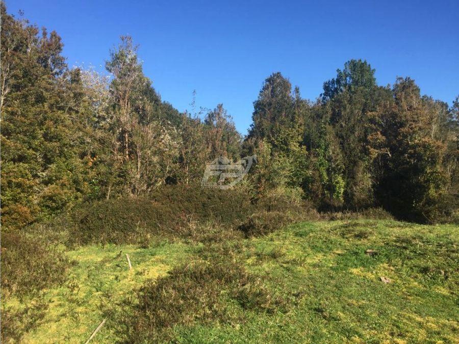 venta de terreno forestal 234 hectareas en chiloe