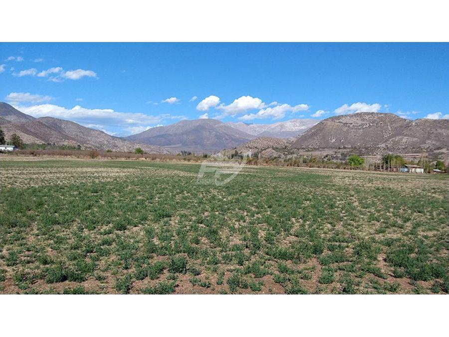 venta terrenos 5000m2 aprox sector san vicente