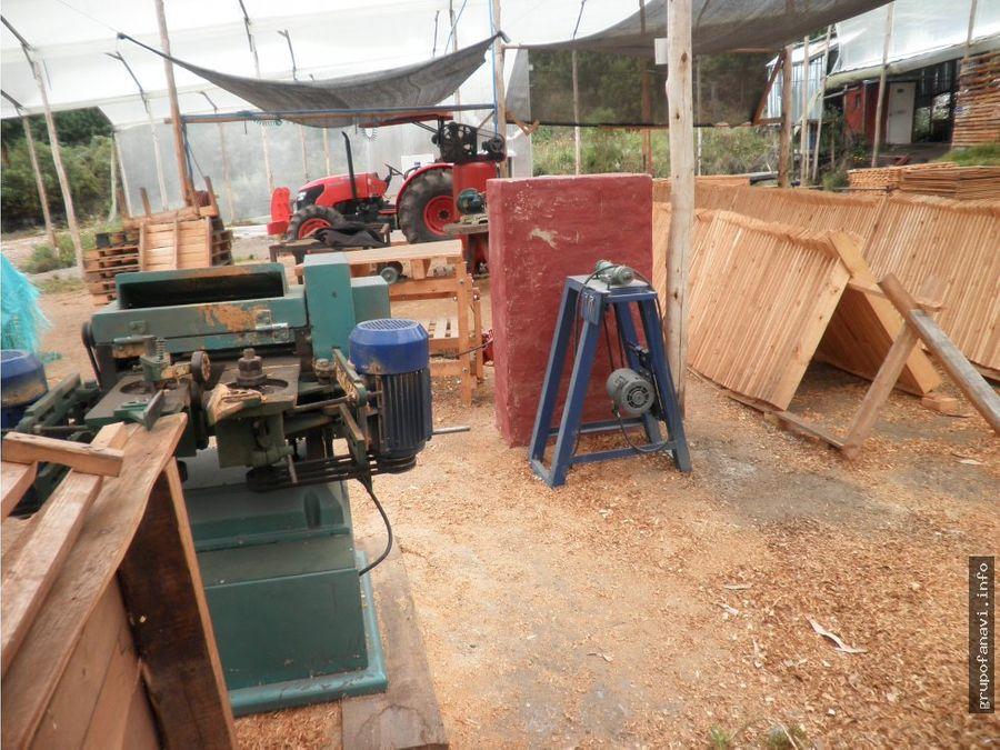 finca maderera en venta en nemocon cundinamarca