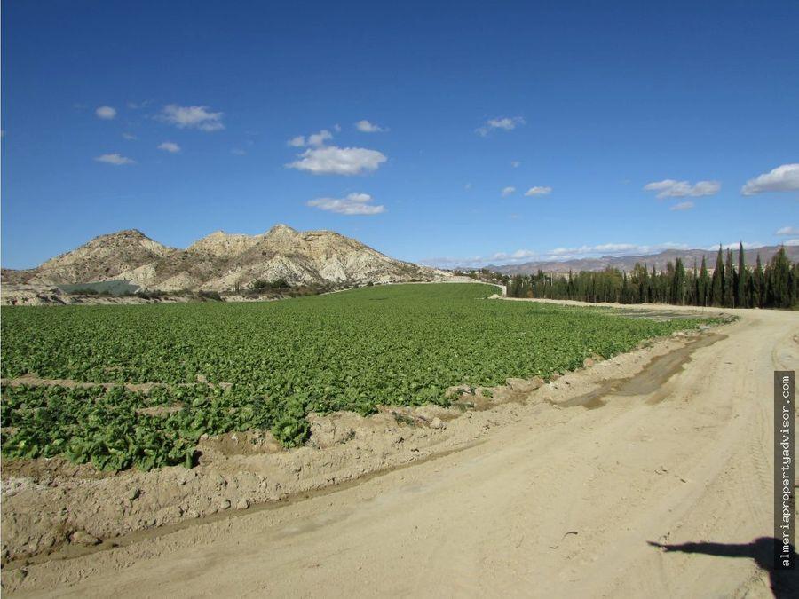 finca agricultura con agua en vera