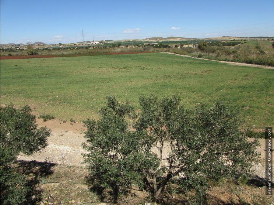 finca agricultura 7 hectareas con balsa y agua