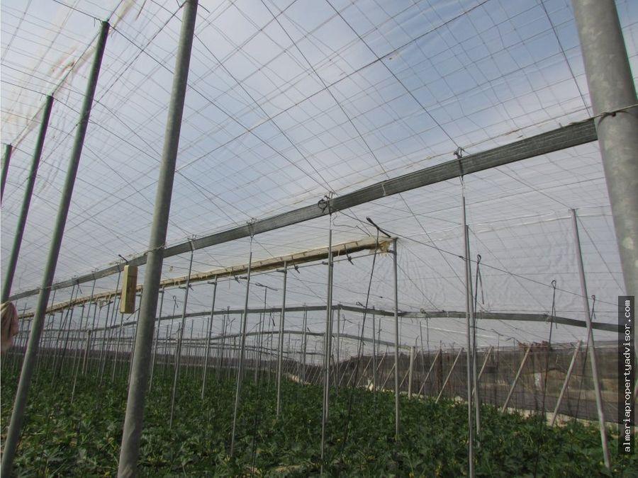 finca agricultura alfaix