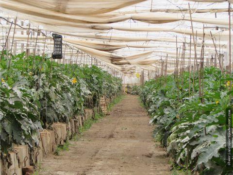 finca agricola campohermoso