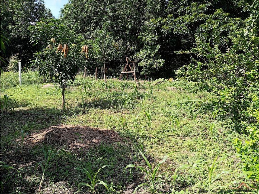 se vende terreno en camino a murillo