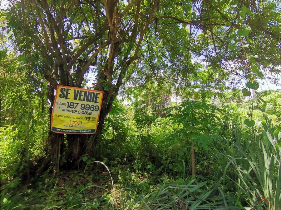 se vende terreno en ejido hidalgo
