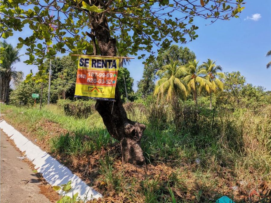 terreno en renta en carretera a puerto chiapas