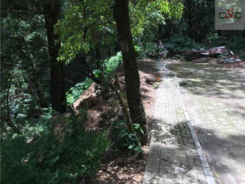 terreno en venta km 24 carr panamericana labor de castilla