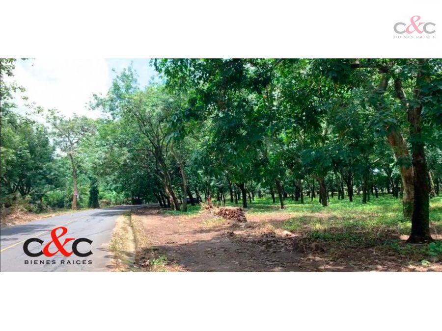 predio comercial en venta km114 ca 02 cocales suchitepequez