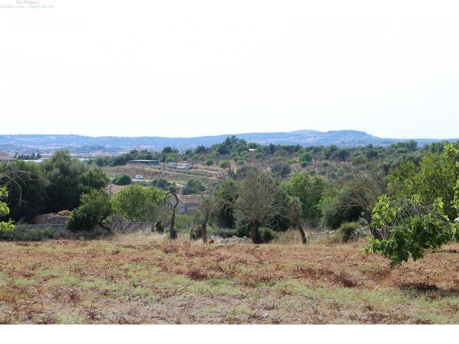 terreno edificable con proyecto san lorenzo