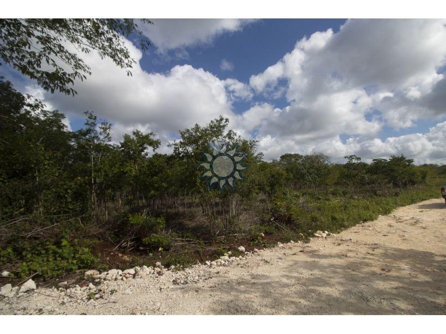 terrenos de inversion en valladolid yucatan con