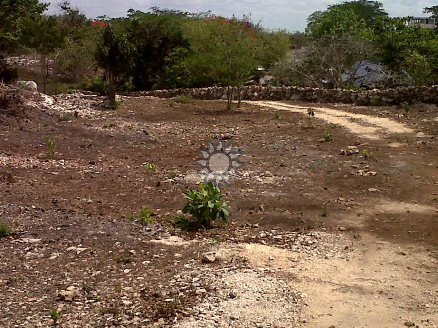 excelente propiedad en ebtun yucatan